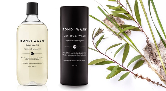 Bondi Wash for Dogs