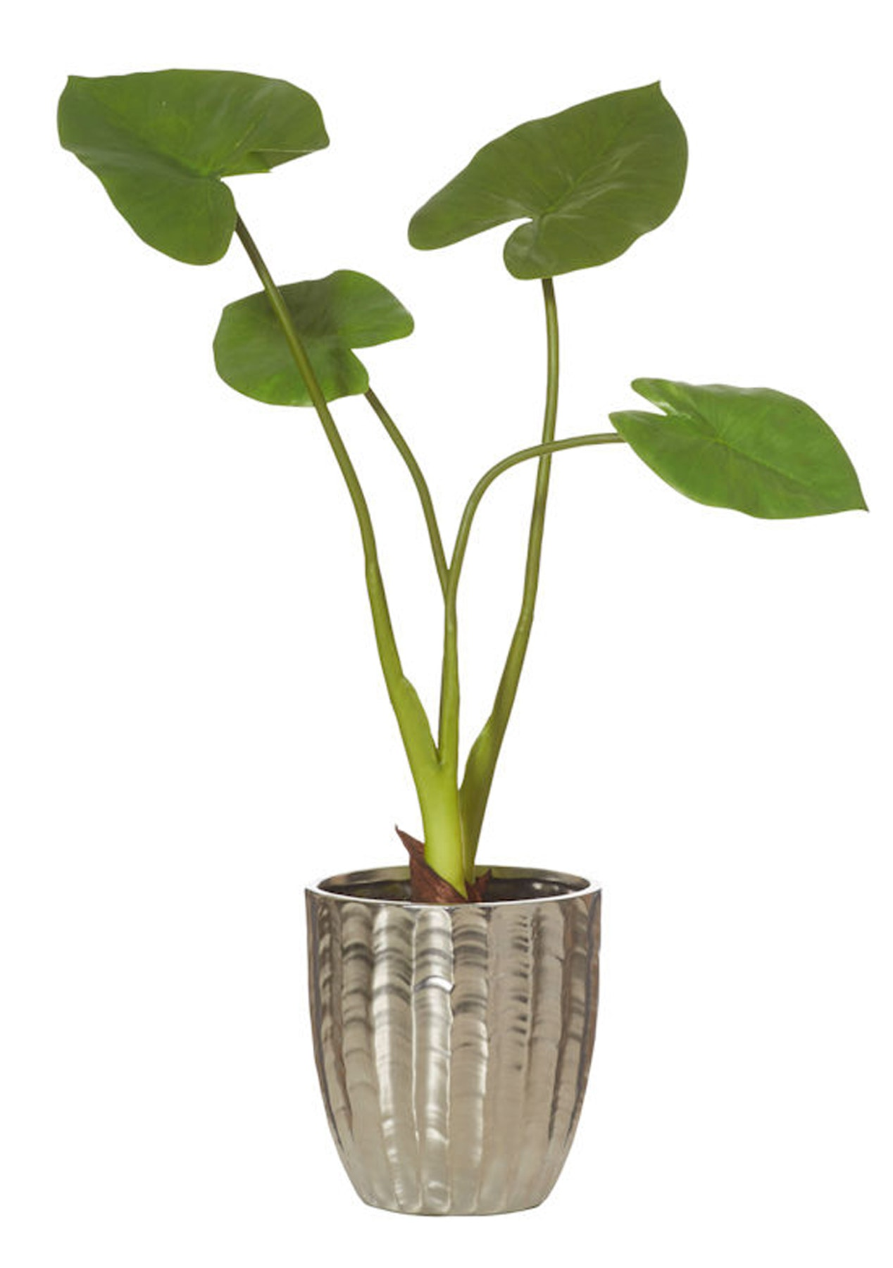 Rogue Taro Leaf In Pot Faux Indoor Plants Pots Onceit Navy