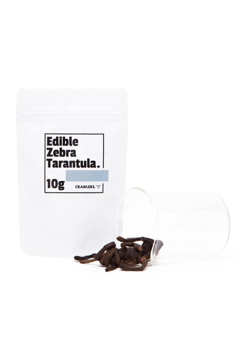 Crawlers - EDIBLE ZEBRA TARANTULA