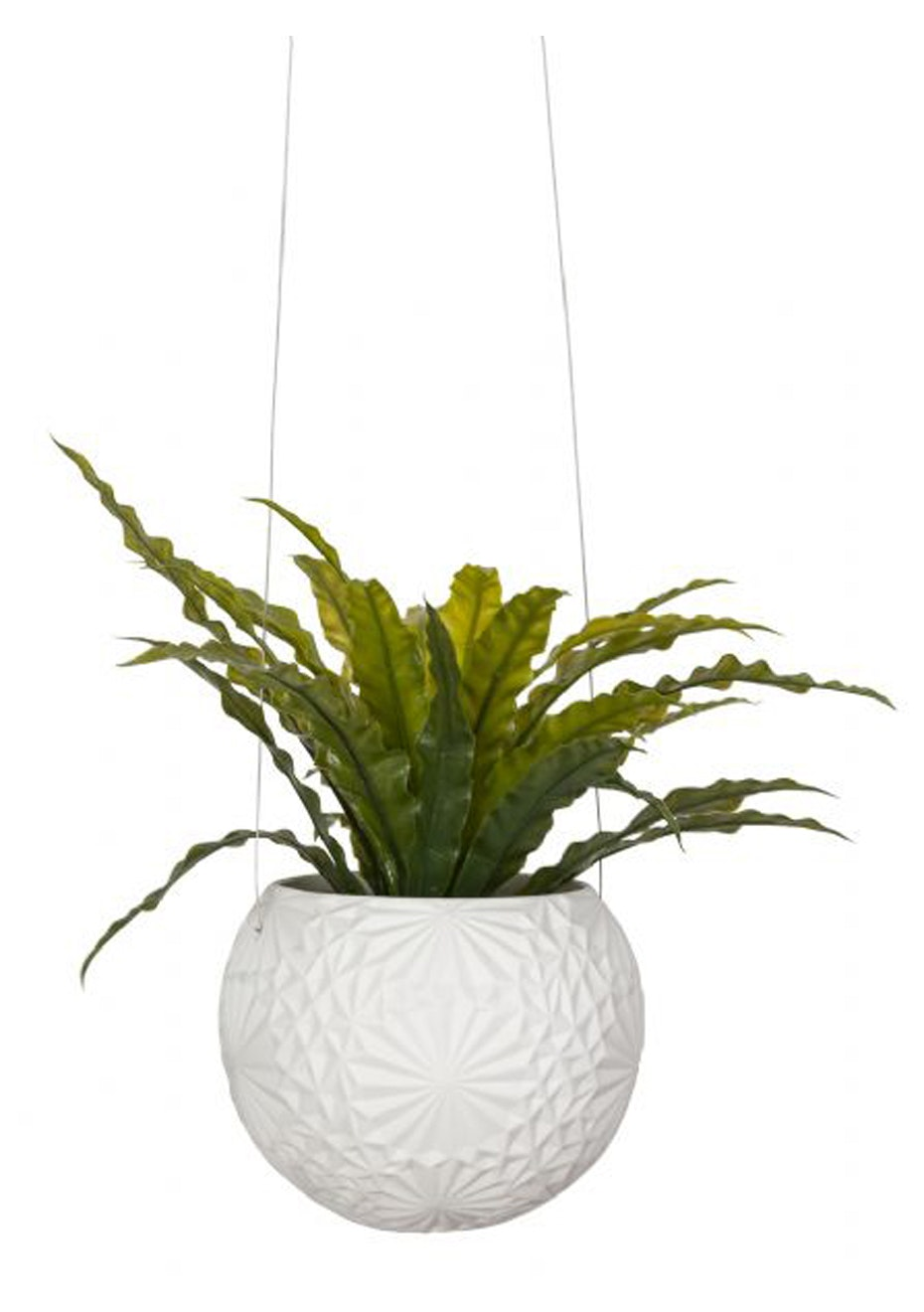 General Eclectic - Hanging Planter Sflake