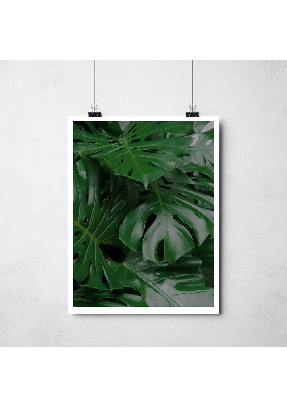 Simply Creative - Monstera - A3 Colour Print