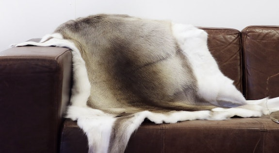 Image of the '$359.95 Reindeer Hides' sale