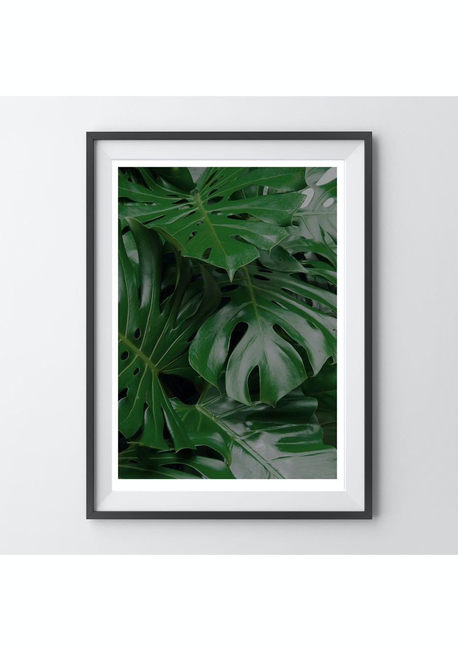 Simply Creative - Monstera - A4 Colour Print