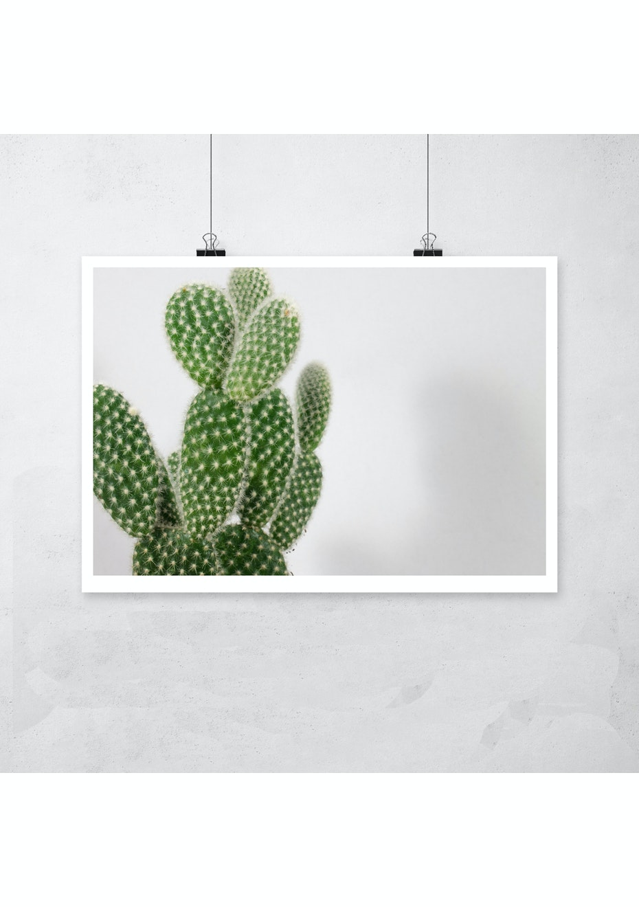 Simply Creative - Cactus - A3 Colour Print