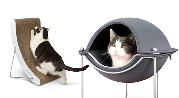 Image of the 'Luxury Pet Furniture & More' sale