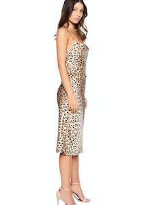 35f7fa2d0ff Bardot - Mayah Leopard Skirt - Leopard