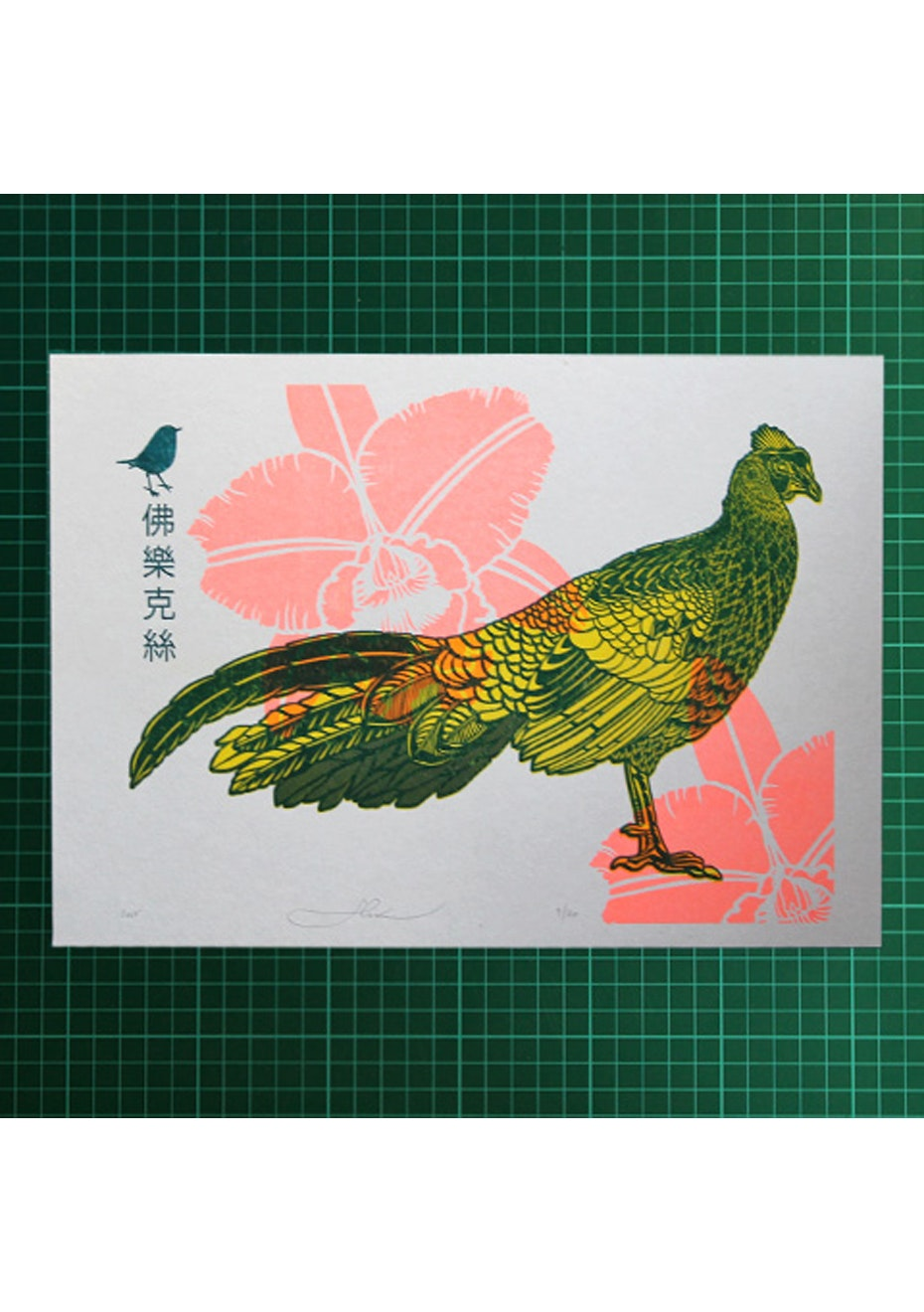Flox - Swinhoe Pheasant