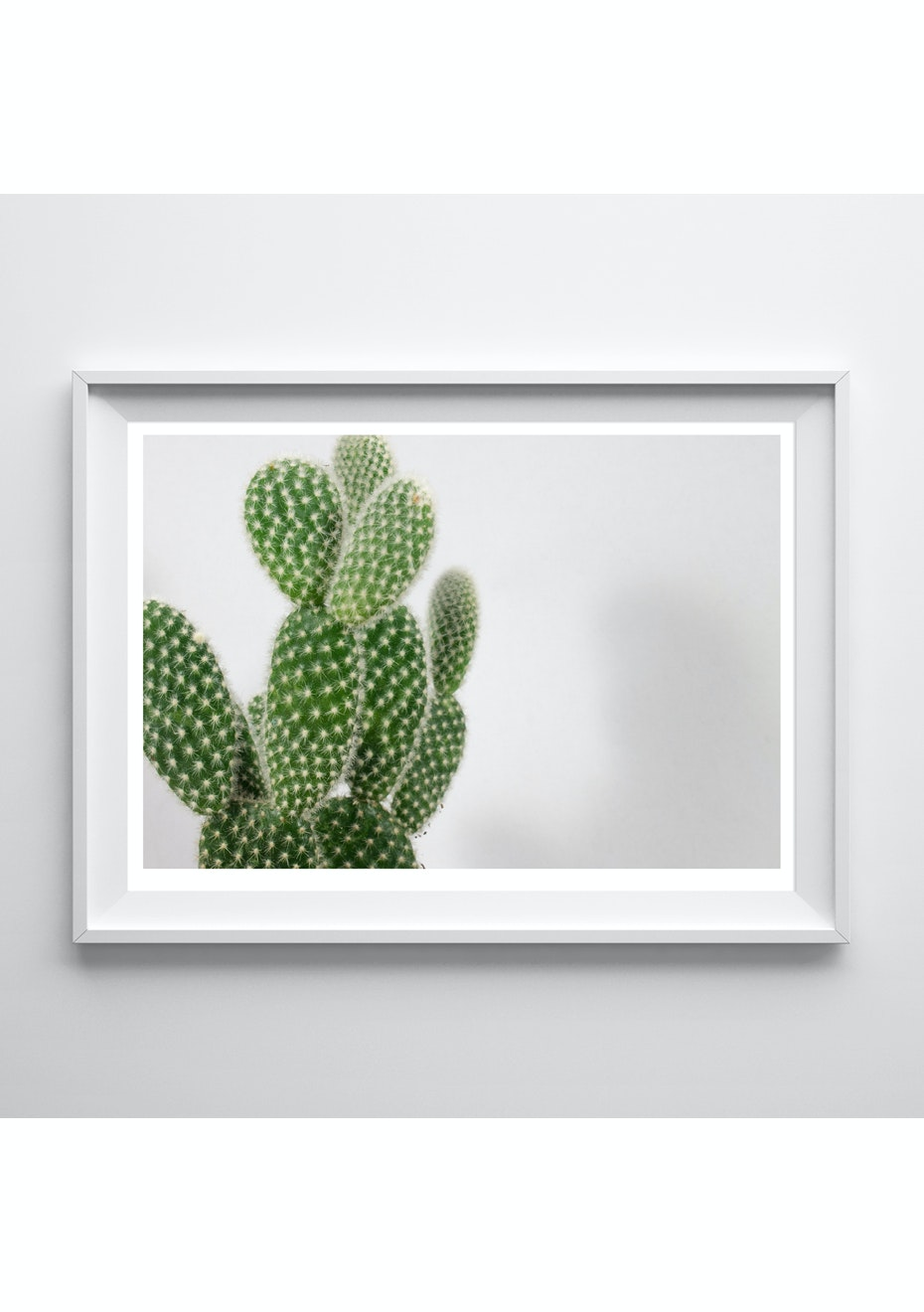 Simply Creative - Cactus - A4 Colour Print